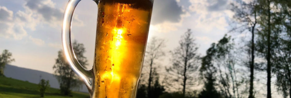 pivo-zuzica
