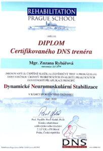 dns-diplom-zuzana-rybarova-web