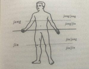 jing_jang_zuzica